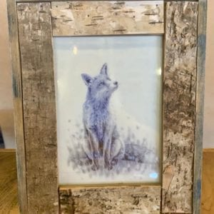 Transomnia Bark 6″ x 4″ Photo Frame