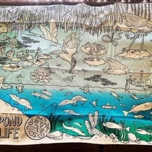 EatSleepDoodle Pond Life Table Cloth