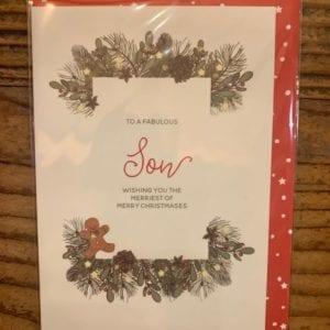 Dandelion Cards 'Christmas Son'