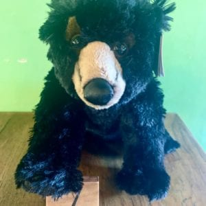 Aurora Blackstone Bear 12″