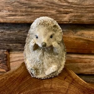 Transomnia Frosty Hedgehog, Sitting