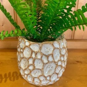 Gisela Graham Natural Ceramic Crater Pot Cover