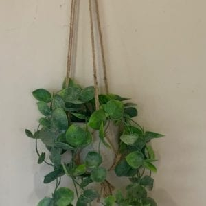 Gisela Graham Faux Trailing Hoyas in Hanging Pot